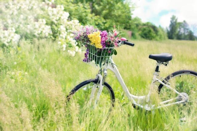 bicycle-788733_1280.jpg